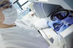 ICMP staff works in Sarajevo lab.